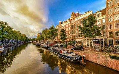 Jakie prace w Holandii najczęściej wykonują Polacy?